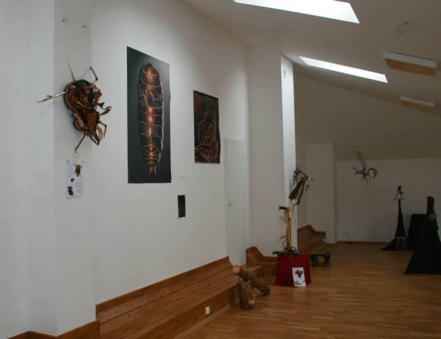 """Ekspozycja wystawy """"Piękno czai się w mroku"""" (MGOK Lidzbark)"""