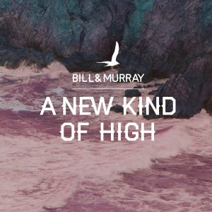 Bill And Murray - A New Kind Of High (lp; 2015)