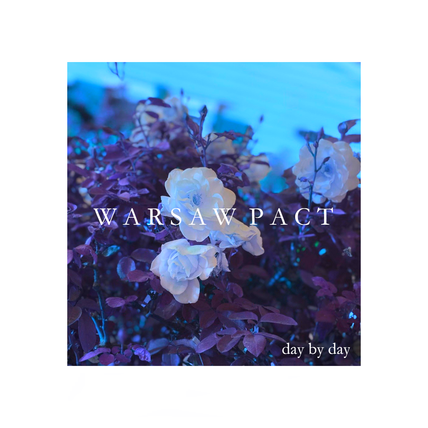 Warsaw Pact - Day By Day (single; 2018)